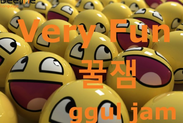 Very Fun in Korean