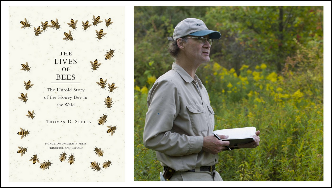 Book Review Lives of bees Thomas D Seeley