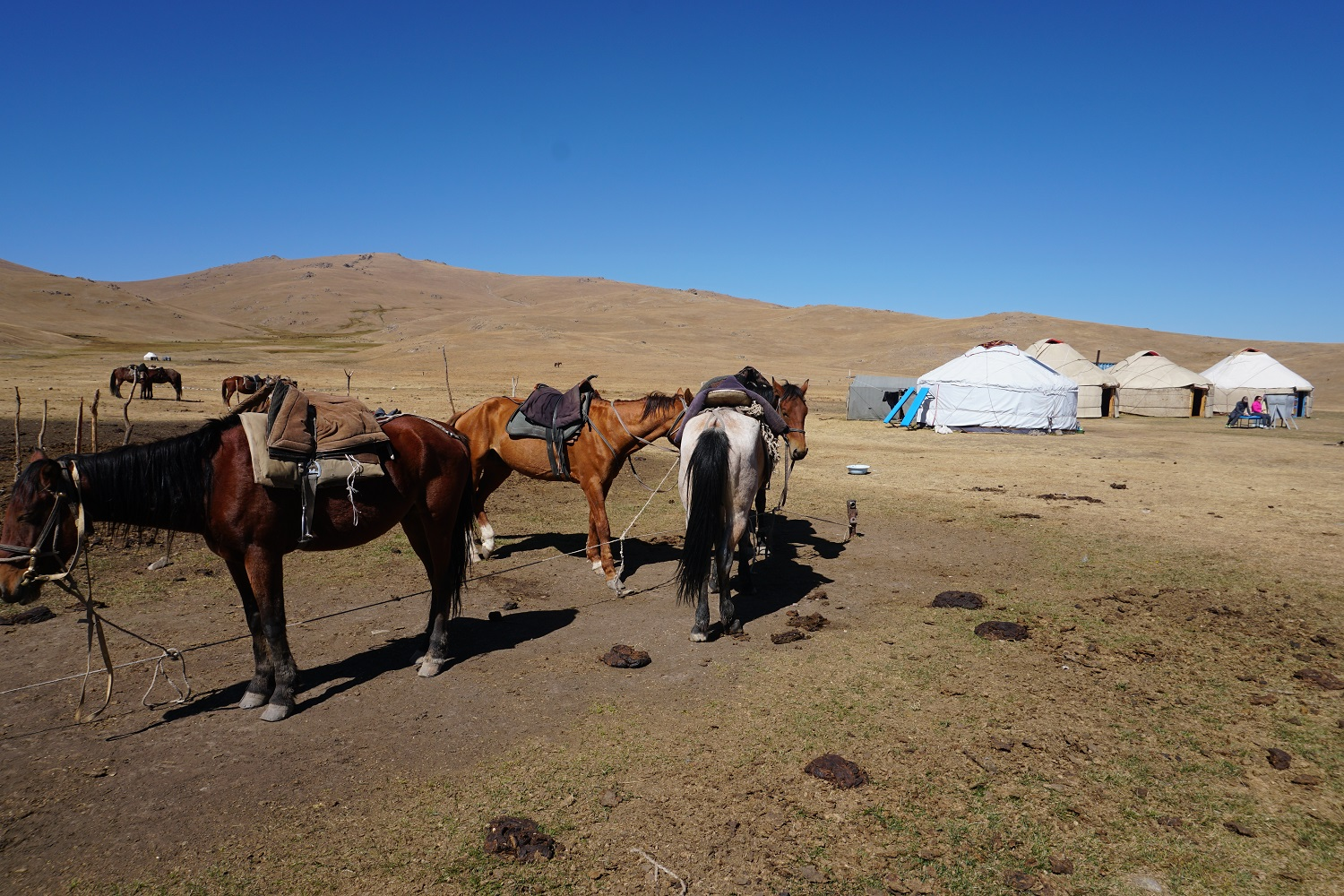 Horse riding along Song Kul, Kyrgyzstan