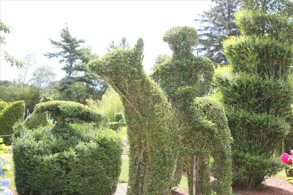 1 282 - Green Animals Topiary Garden
