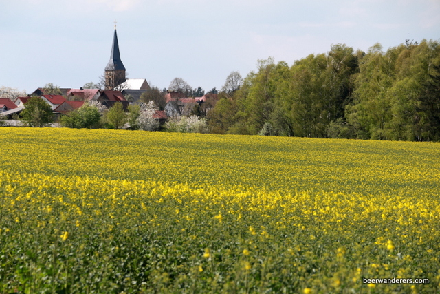 flowers with church
