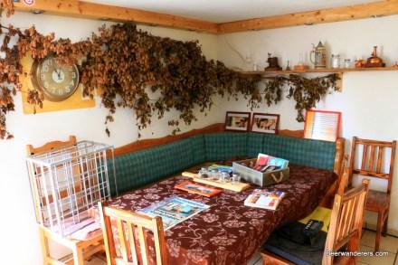 cozy pub with hops