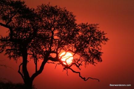 kruger_sunset