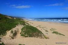 sandy beach waves