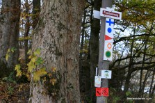 trail_signs_fünf
