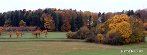 distant foliage