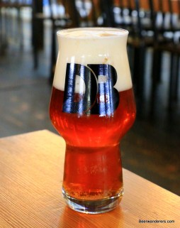 amber beer with big head in glass