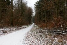 snowy hiking trail
