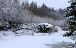 small bridge over frozen lake