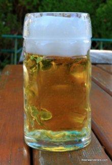 yellow fizzy beer in mug