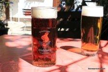 dark beer in mug and golden beer in glass