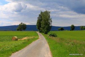 farm road with hay