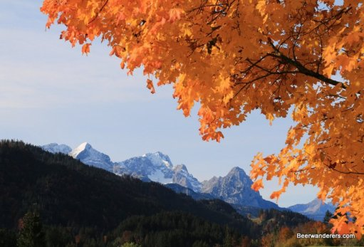 mountains with autumn leaves
