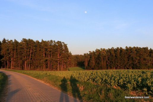 two shadows in countryside