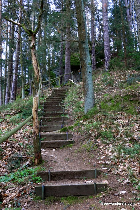 wooden stairs on hike