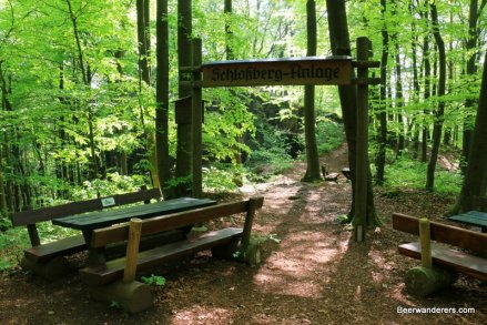 picnic bench in forest