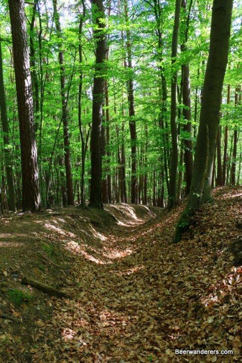 forst trail