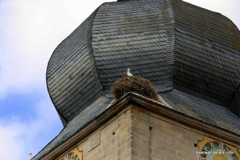stork nest on church