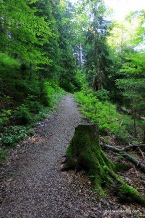 atmospheric trail