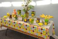 Safari Themed Baby Shower For Limited Budget | FREE ...
