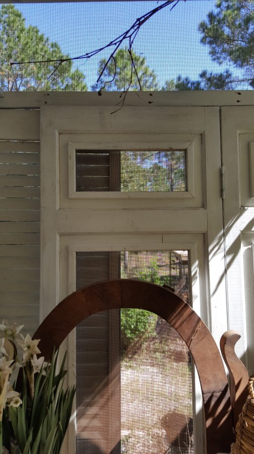Vintage Screens Shutters Garden Potting Shed DIY Farmhouse Country Rustic
