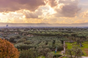 Luxury Masseria Torre Abate Risi Puglia by BeeYond Travel 39
