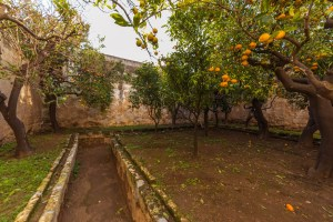 Luxury Masseria Torre Abate Risi Puglia by BeeYond Travel 8 | Fruit Garden 2