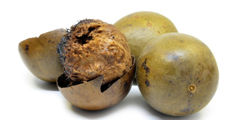 13 Benefits of Monk Fruit