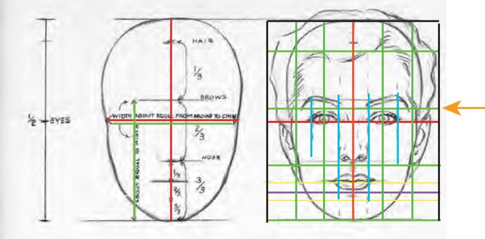 medium resolution of femalehead maleoverlay 1witharrow