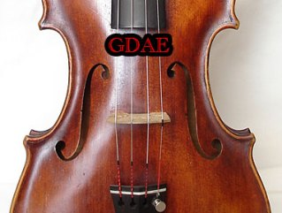 Labeled Violin Strings