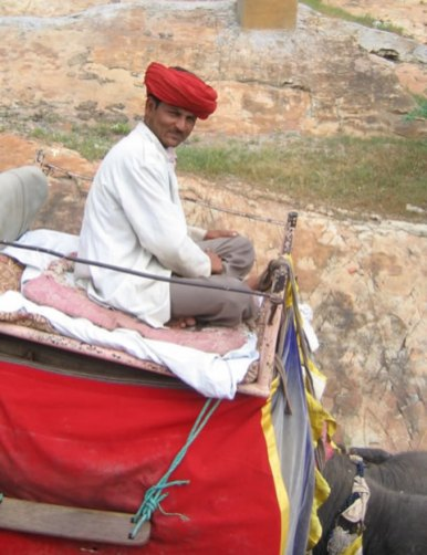 mahout at Amber Fort