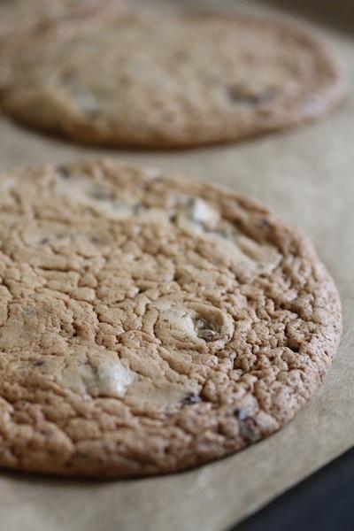 boekweit chocolade koekje