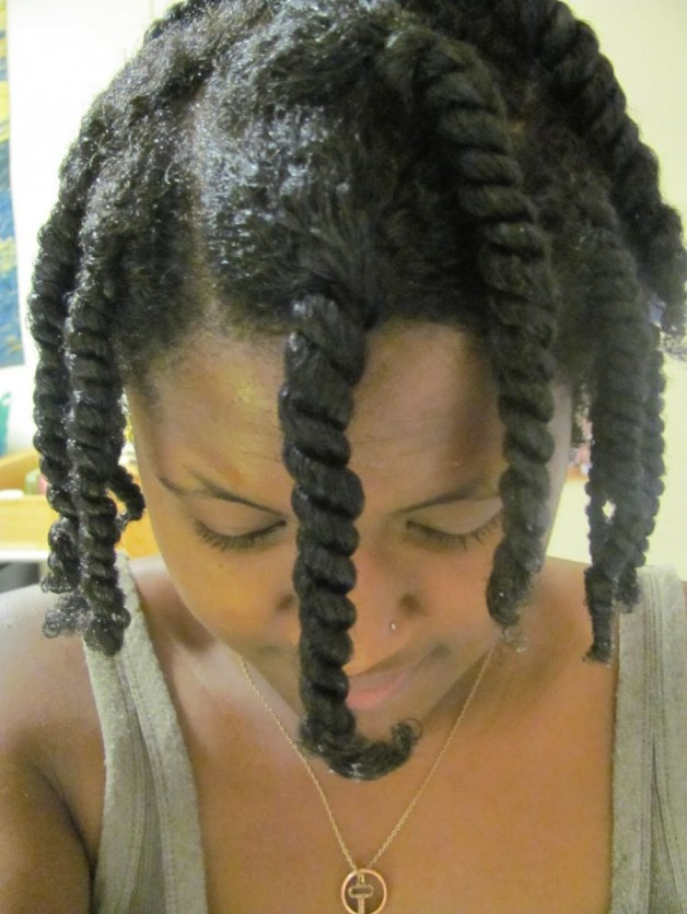 Natural Hair Styles Double Strand Twist Behairstyles Com