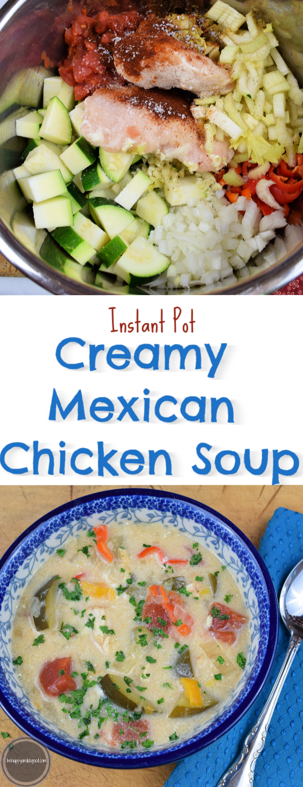 instant pot creamy mexican chicken soup