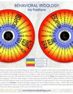 Download free pdf iris map also take good eye photos  behavioral iridology rh behavioraliridology