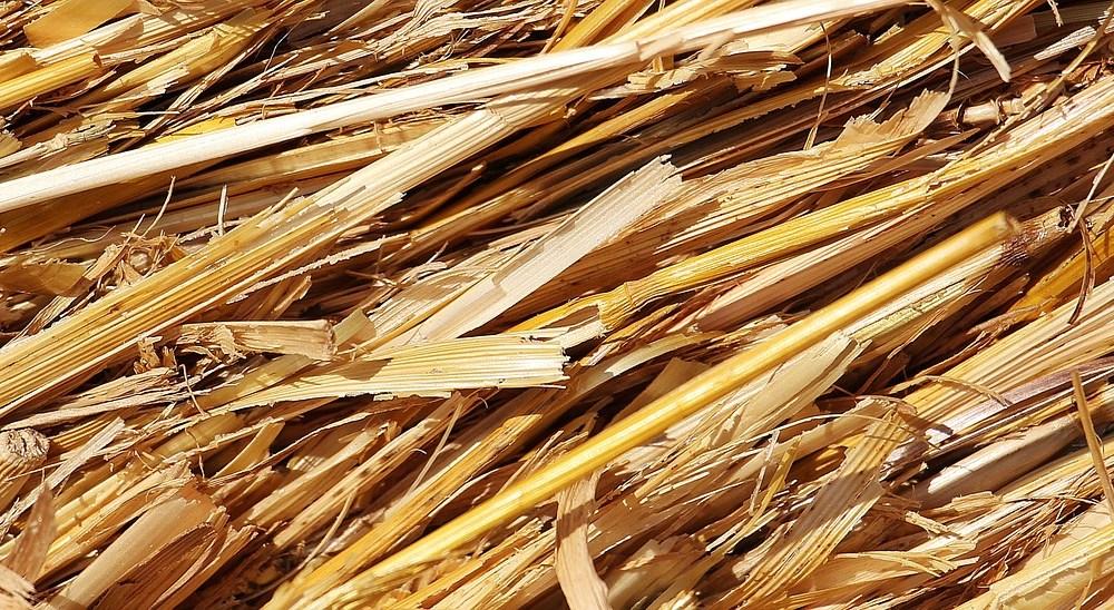 straw-1529063_1280