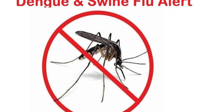 8 Out of 100 people has swine flu in Tamil Nadu 1 Behind History