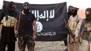 صورة متوقع عودة 100 من أعضاء داعش الئ السويد