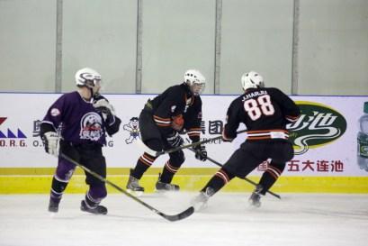 bulls-bears-december-5th-41