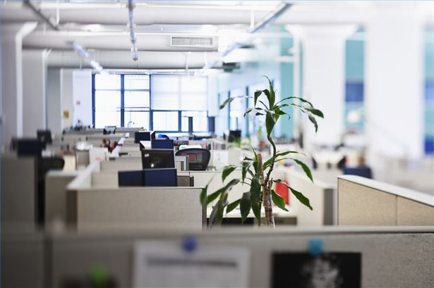 Office Space: Everything New Business Owners Might Need for