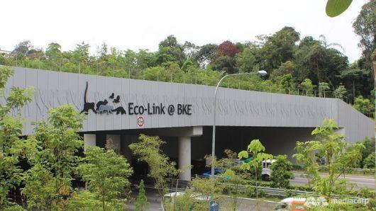 bbh eco3