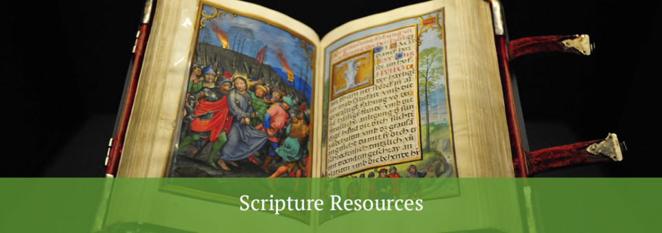 scripture resources - open faced illustrated Bible