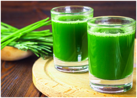 Wheat grass Juice as remedy for Jaundice