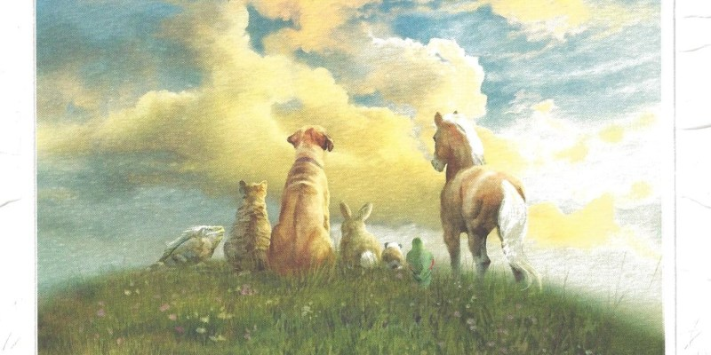 animals go to heaven