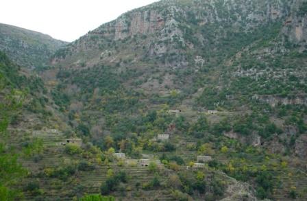 Eco Race At Wadi Qanoubine