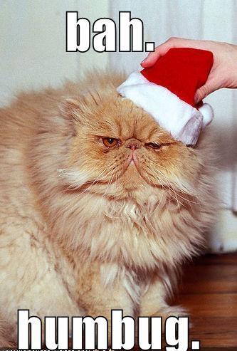 La Wlooo!!!…Jolly as a Ho, Ho, Ho!