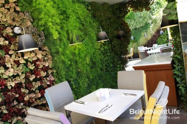 Sweet Tea: A Private Rooftop 'Secret Garden' Paradise