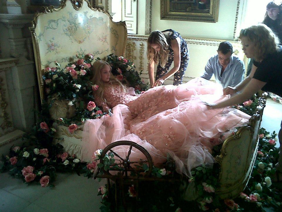 Princess Aurora's Gown… by Elie Saab