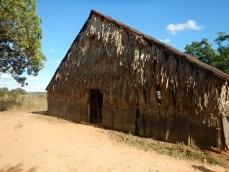 Byggnad där man torkar tobak
