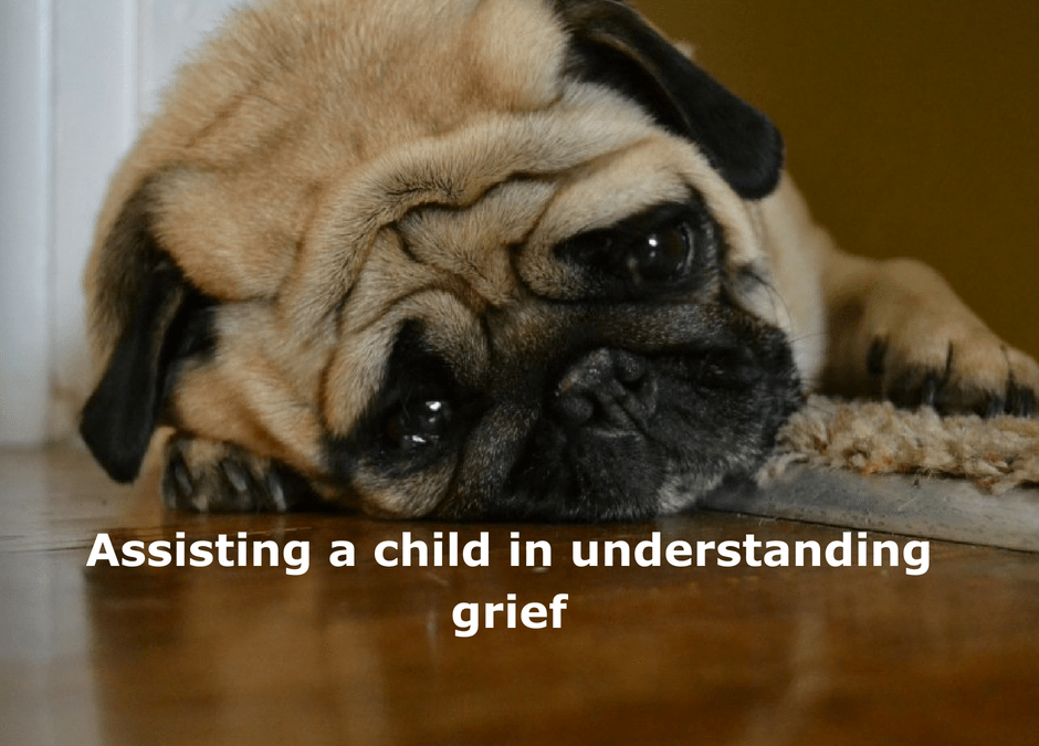 Assisting a child in understanding grief